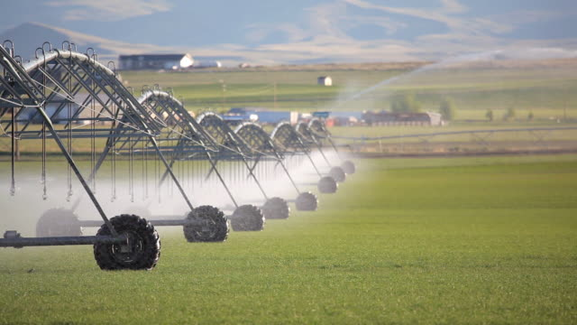 hd modern agriculture irrigation system - irrigation equipment stock videos and b-roll footage