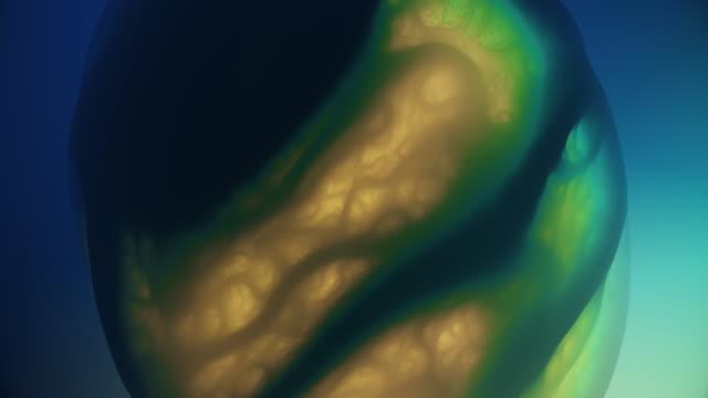 stockvideo's en b-roll-footage met moderne biologische cel - kunstmatige inseminatie