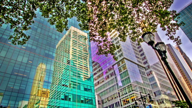 modern building and tree leaf - curve stock videos & royalty-free footage