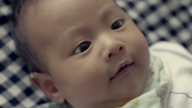 vídeos de stock, filmes e b-roll de famílias modernas - só bebês meninos