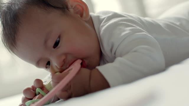 vídeos de stock e filmes b-roll de modern families - vida de bebé