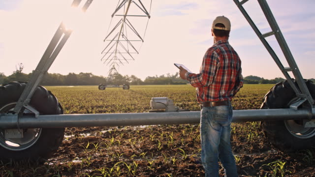 ds modern farmer using a digital tablet on the field - sprinkler system stock videos & royalty-free footage