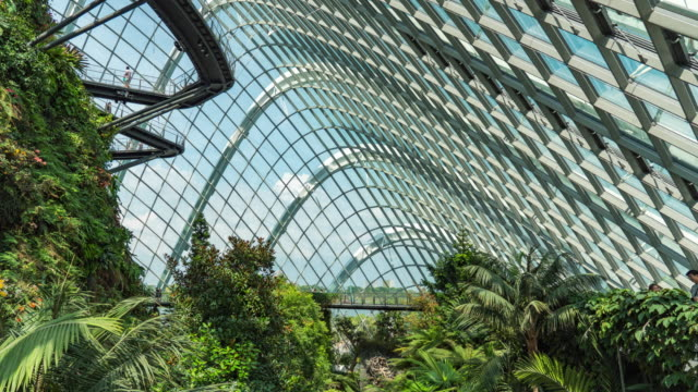 modern indoor park, time lapse video - architectural dome stock videos & royalty-free footage