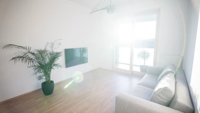 Modern living room illuminated by sunlight