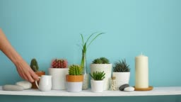 Modern room decoration with Picture frame mockup. White shelf against pastel turquoise wall with Collection of various cactus and succulent plants in different pots. Hand is watering them.