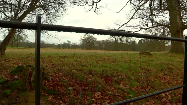 migrant workers win compensation payout against kent gangmasters england kent ext general views of fields in kent countryside - sklaverei stock-videos und b-roll-filmmaterial