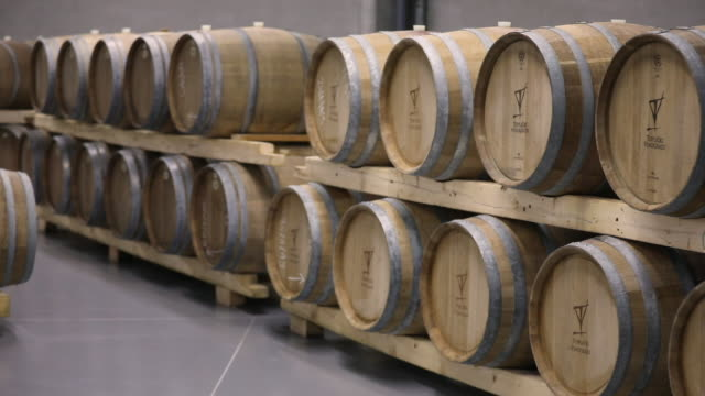 modern wine cellar full of wine casks - wine cask stock videos and b-roll footage