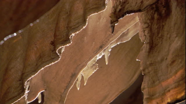 vídeos de stock, filmes e b-roll de moisture drips from stalactites in deer cave. available in hd. - stalactite