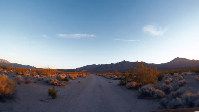 Mojave Desert, national preserve - Road trip in the United States