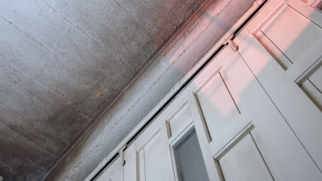 mold on ceiling - fungal mold stock videos & royalty-free footage