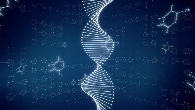 ADN Molecula