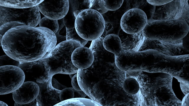 sem molecular structure - biomedical animation stock videos & royalty-free footage