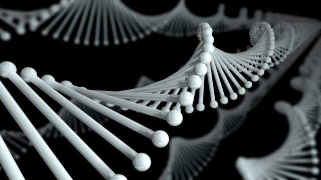 DNA Molecule Loop black background
