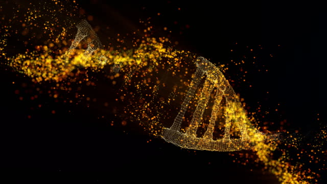 dna molecule model. glowing particles - dna video stock e b–roll