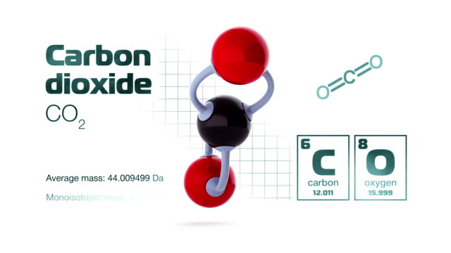 molecule of carbon dioxide - oxygen stock videos & royalty-free footage