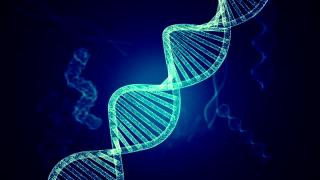 dna molecule structure - helix stock videos & royalty-free footage