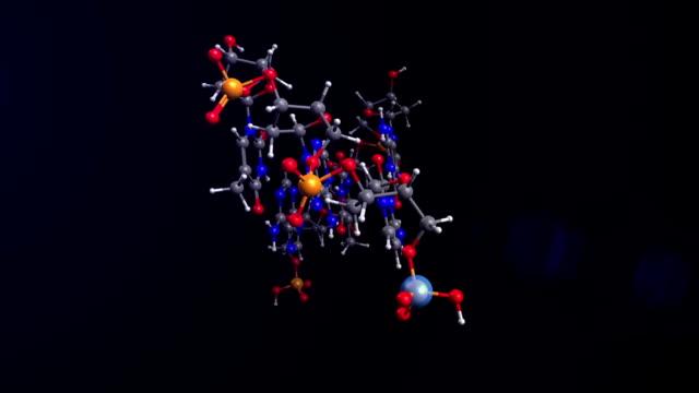dna rna 分子 - rna点の映像素材/bロール