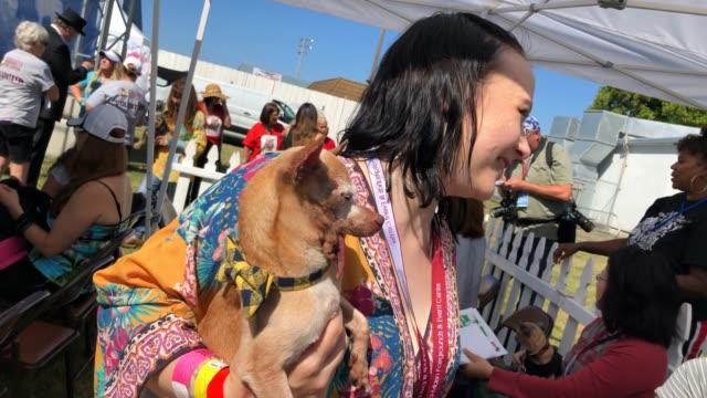 CA: Annual Ugliest Dog Competition Held In Petaluma, California
