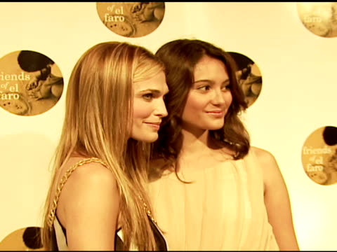 molly sims and emma heming at the 4th annual night with friends of el faro at the music box in hollywood, california on june 18, 2006. - molly sims stock videos & royalty-free footage