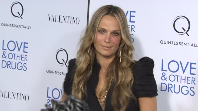 molly sims at the 'love and other drugs' new york screening at new york ny. - モリー・シムズ点の映像素材/bロール