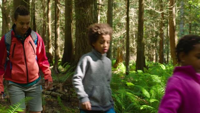 mom hikes in the forest with adolescent daughter and son - 6 7 år bildbanksvideor och videomaterial från bakom kulisserna
