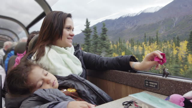 mom on a train - denali national park stock videos & royalty-free footage