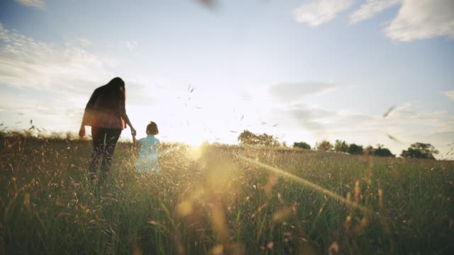 vídeos de stock e filmes b-roll de mom with children walking in nature at sunset - mãe
