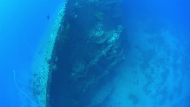 momokawa maru bow with lantern and divers, underwater wrecks, truk lagoon, chuuk micronesia - 1944 stock videos & royalty-free footage