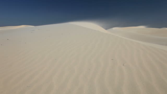 monahans sand dunes - named wilderness area stock videos & royalty-free footage