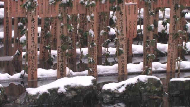 monastery, koyasan, honshu, japan - japanese script stock videos & royalty-free footage