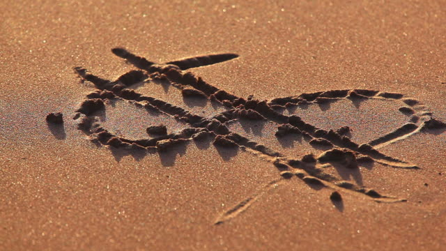 Money symbol drawn in the sand