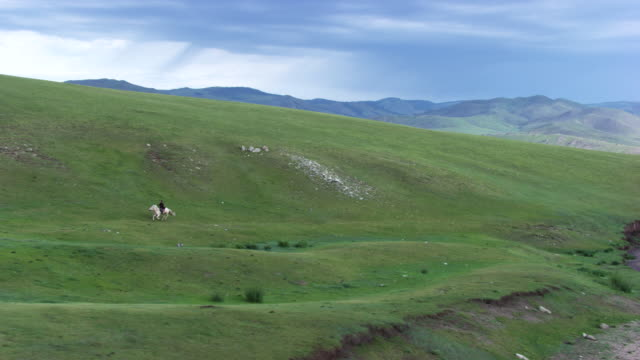 mongolia : horse and rider galloping - independent mongolia stock videos & royalty-free footage