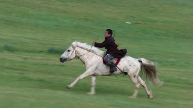 mongolia : horse and rider galloping - independent mongolia stock videos and b-roll footage