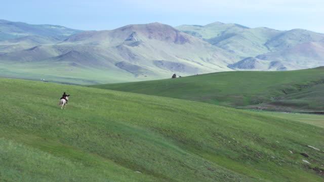 vídeos de stock e filmes b-roll de mongolia : horse and rider galloping - cavalgar