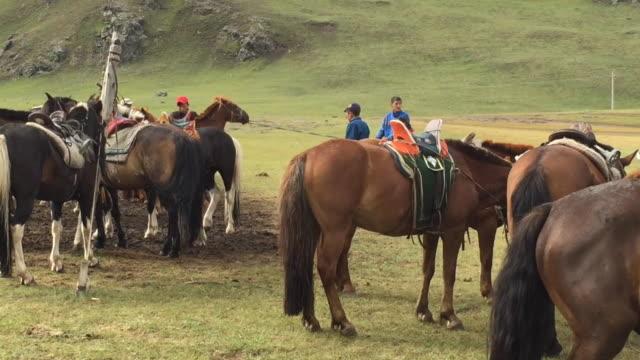 mongolian young people taking care of horses at orkhon valley cultural landscape in mongolia - arbetsdjur bildbanksvideor och videomaterial från bakom kulisserna