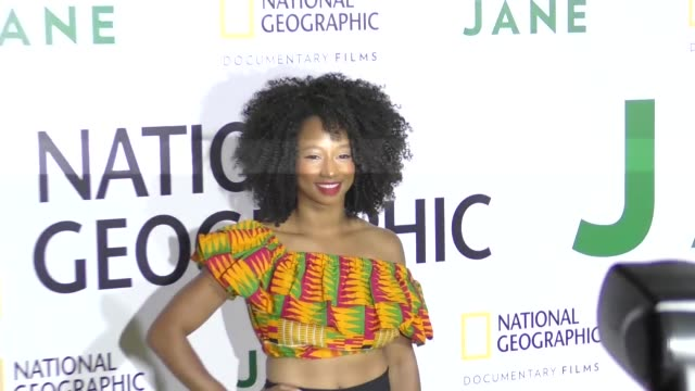 monique coleman at the premiere of national geographic documentary films' 'jane' at the hollywood bowl on october 09, 2017 in los angeles, california. - monique coleman stock videos & royalty-free footage
