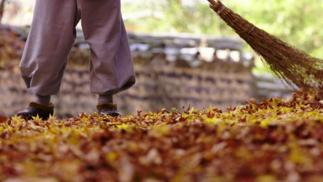 monk sweeping fallen leaves in songgwangsa temple / suncheon-si, jeollanam-do, south korea - grove stock videos & royalty-free footage