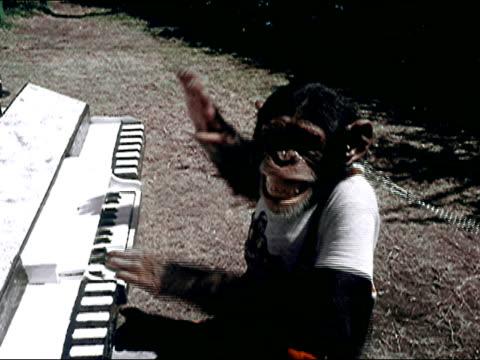 1956 Monkey Jungle, Florida