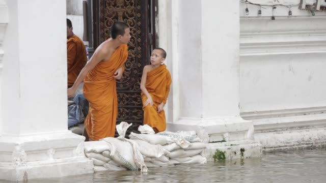 monks at wat mahathat close to bangkok's grand palace watch the rising flood waters as high tide approaches on october 29 2011 in bangkok thailand - bronek kaminski stock videos & royalty-free footage