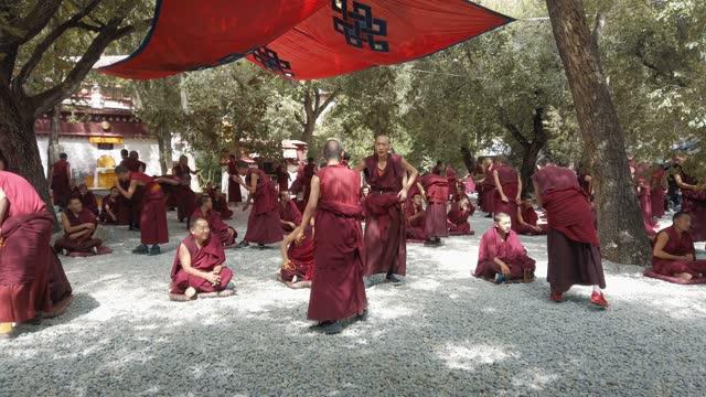 monks debating at sera monastery, lhasa, tibet - traditionally tibetan stock videos & royalty-free footage
