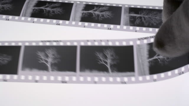 Monochrome film negatives and magnifying glass on a light box.