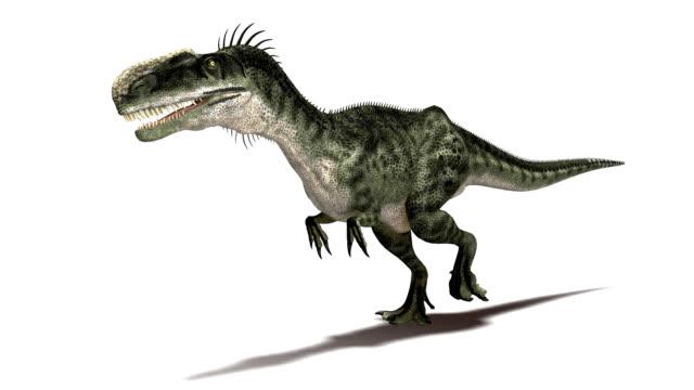 monolophosaurus dinosaur walking - jurassic stock videos & royalty-free footage
