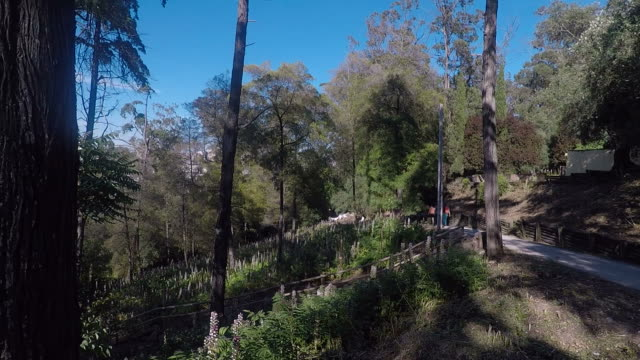 vidéos et rushes de parc naturel monsanto - footpath