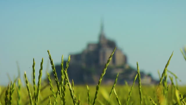 FOCUSING, MS, Mont Saint Michel, Normandy, France
