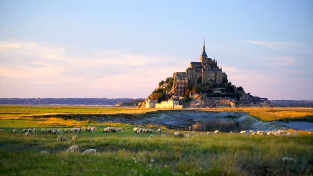 mont saint-michel castle in normandy - famous place stock videos & royalty-free footage
