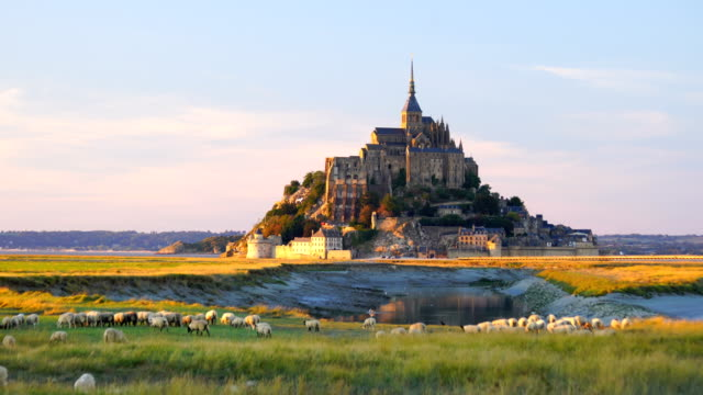 mont saint-michel castle in normandy - castle stock videos & royalty-free footage