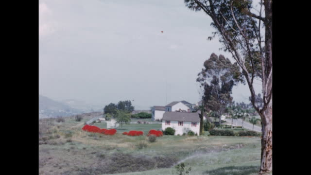 Montage. Far away view of a house in the suberbs.  A woman sits in her convertable car with her dogs.