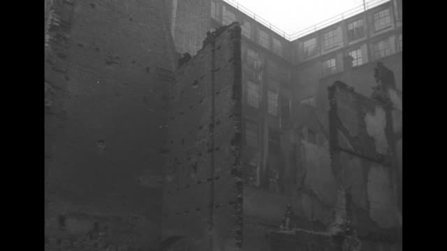 montage framework of buildings ruined by nazi bombings during the blitz in london / ls down street with rubble and destroyed buildings pan more... - houseplant stock videos and b-roll footage