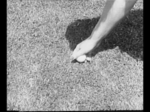 "stockvideo's en b-roll-footage met montage mildred ""babe"" didrikson places marker on golf green / didrikson as she prepares to tee off / didrikson 's hands on golf club / didrikson... - atlete"