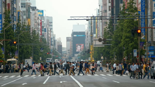 montage - streets of akihabara, tokyo - road intersection stock videos & royalty-free footage